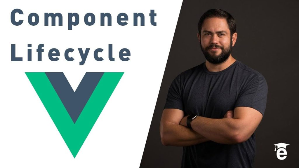 Comprehensive Guide to the Vue JS Component Lifecycle Hooks