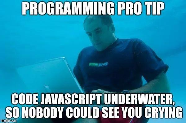 javascript programming meme